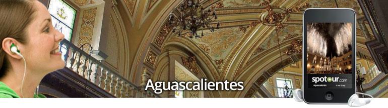banner-aguascalientes.jpg