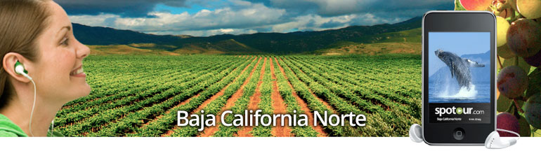 banner-baja-california-norte.jpg