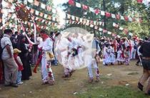 Danza de los Arrieros